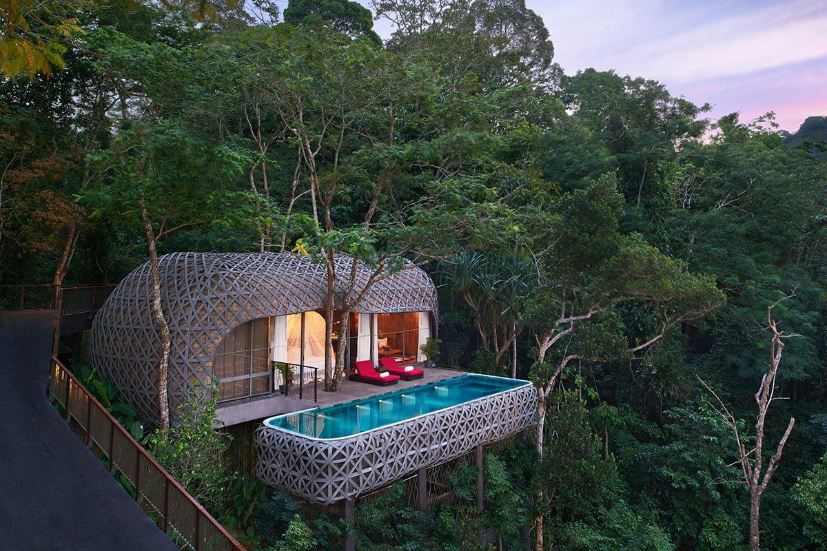 Luxurious treehouses