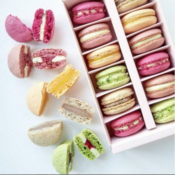 Macaroon - Sweet Treats
