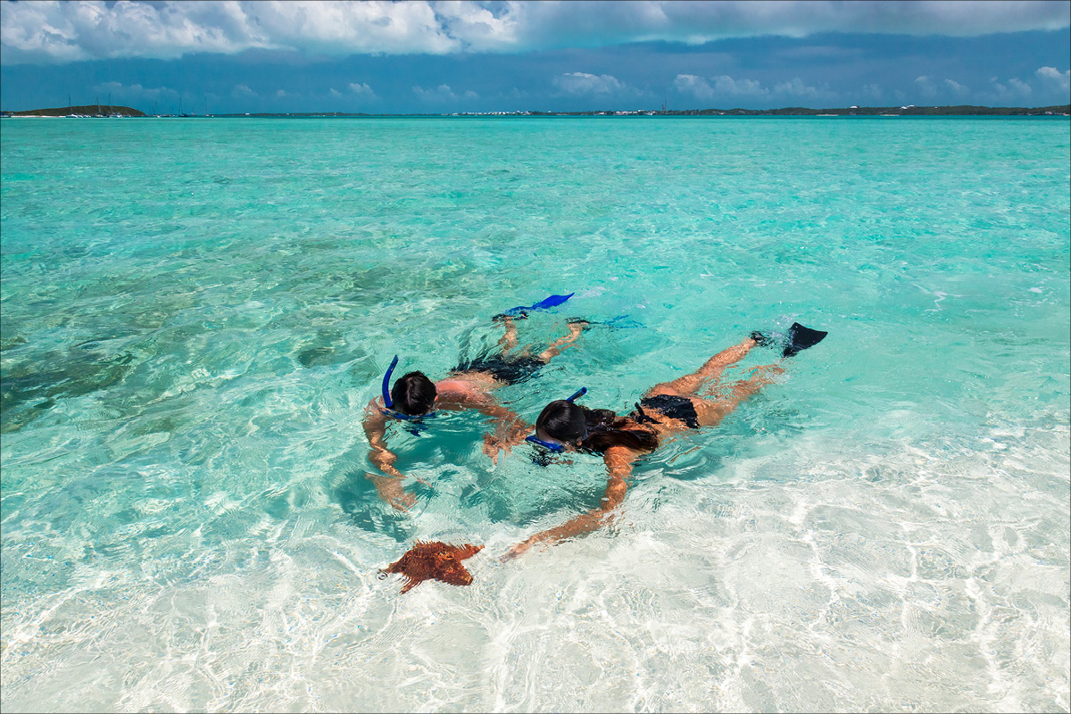 Sandals Emerald Bay Bahamas starfish