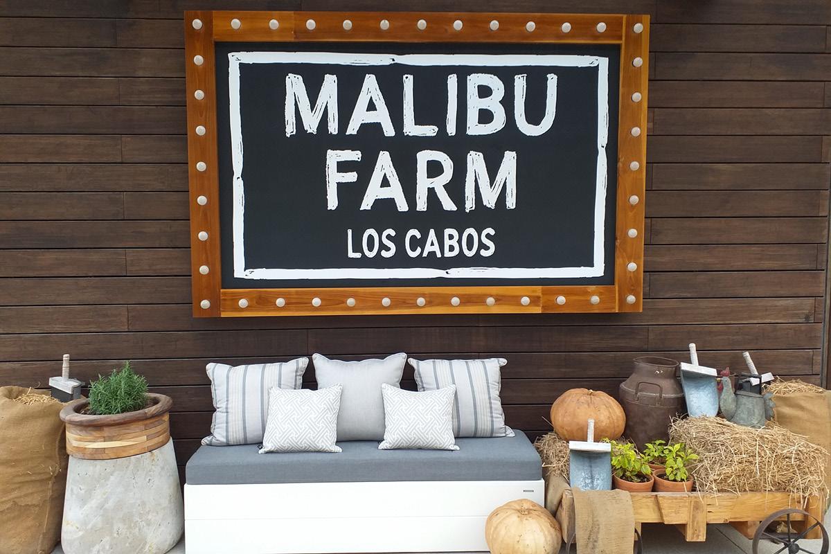 Nobu Hotel Los Cabos Malibu Farm