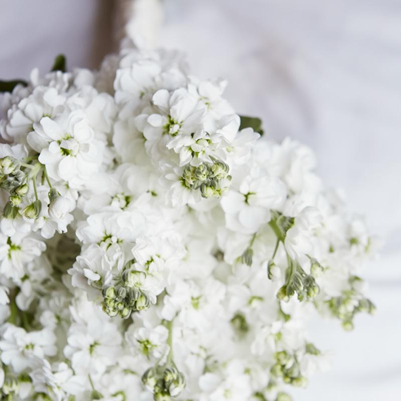 Hayford & Rhodes bouquet